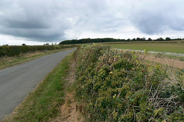 Pudlicote Lane