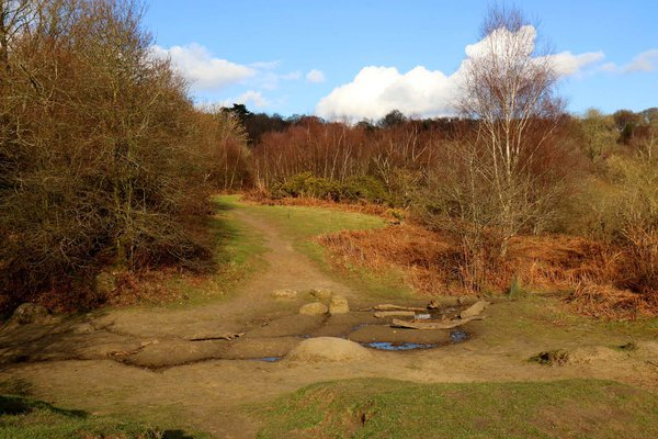 The Sandpit, Shotover Country Park