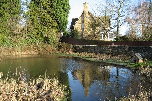 Kirtlington Pond